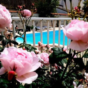 villa-les-roses-chambres-hotes-lucon-rosiers